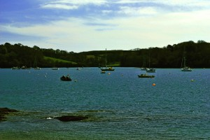 42 Cornwall looking towards Place from St Mawes2
